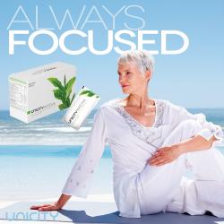 Matcha Focus